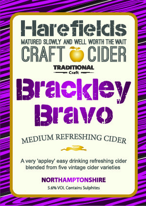 Brackley Bravo pump clips-01
