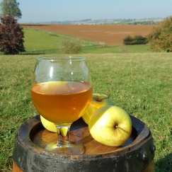 English craft cider