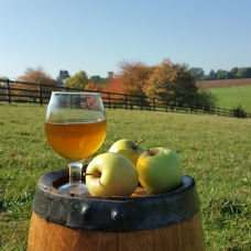 Real craft cider harefields